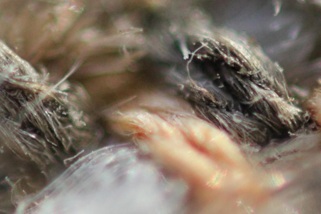 Переплетение ниток ткани при очень сильном увеличении