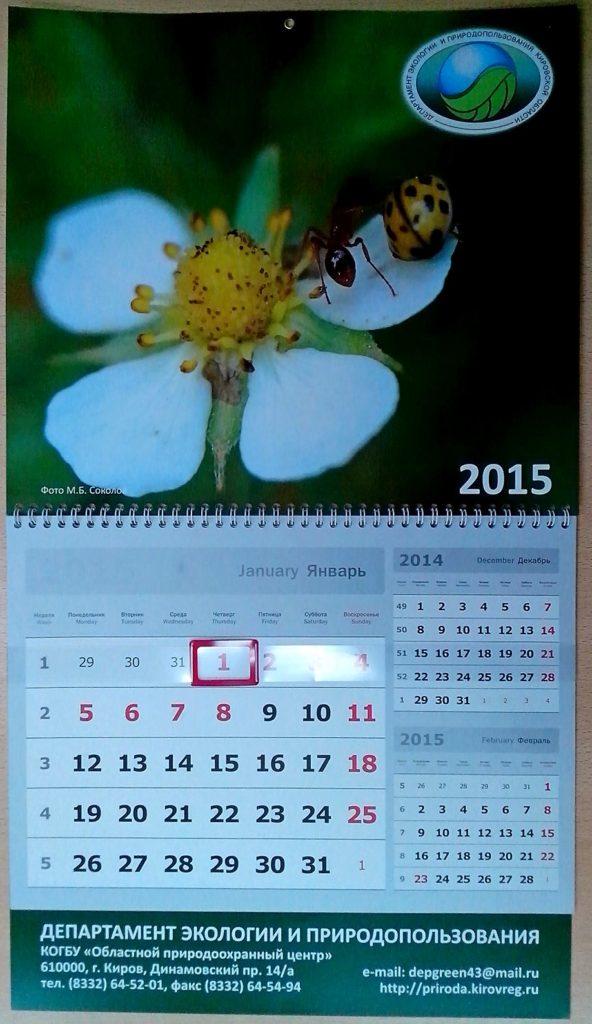 Настенный перекидной календарь-2015 с муравьём и божьей коровкой на цветке земляники