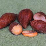 салак (змеиный фрукт, Salacca zalacca): очищенные от оболочки плоды и косточка внутри