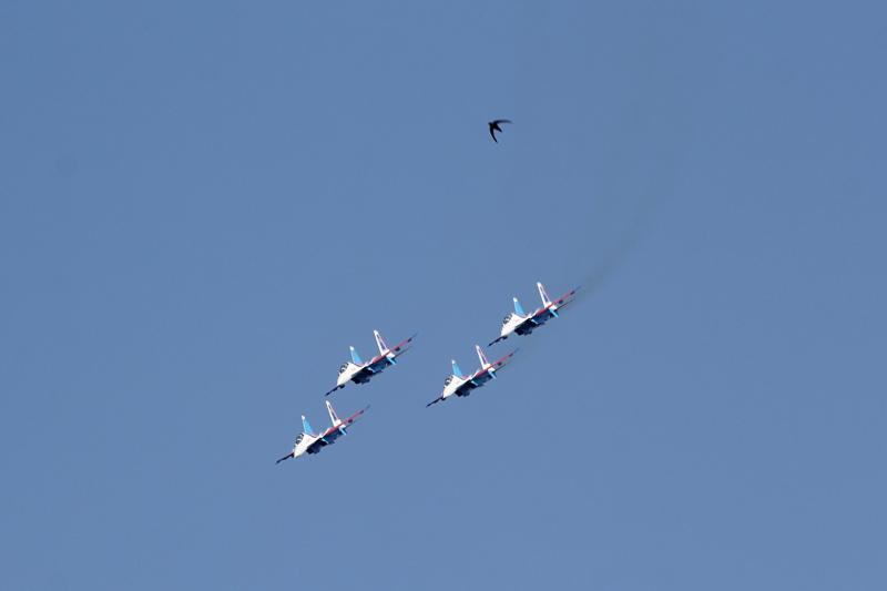 «Русские Витязи» и стриж в небе над Кировом