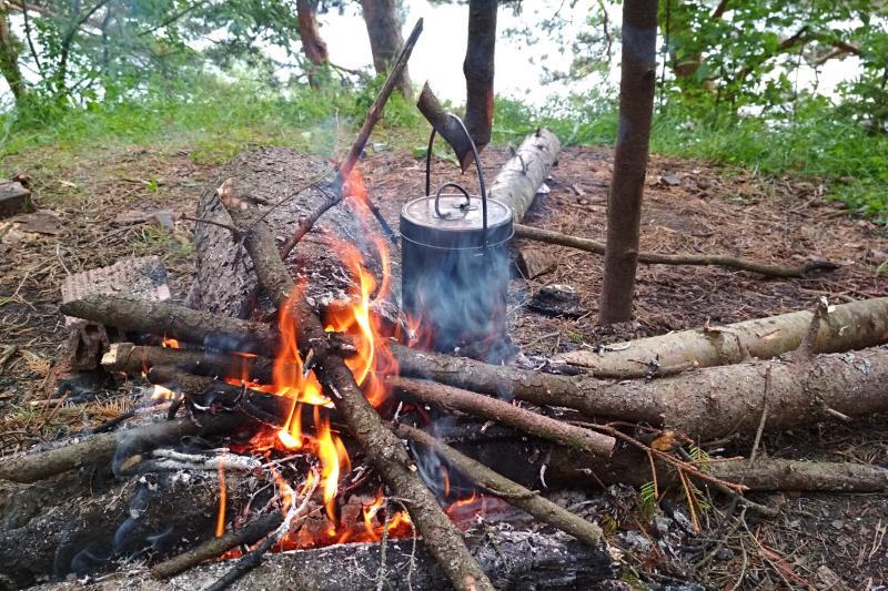 Костёр в сосновом лесу и котелок с чаем