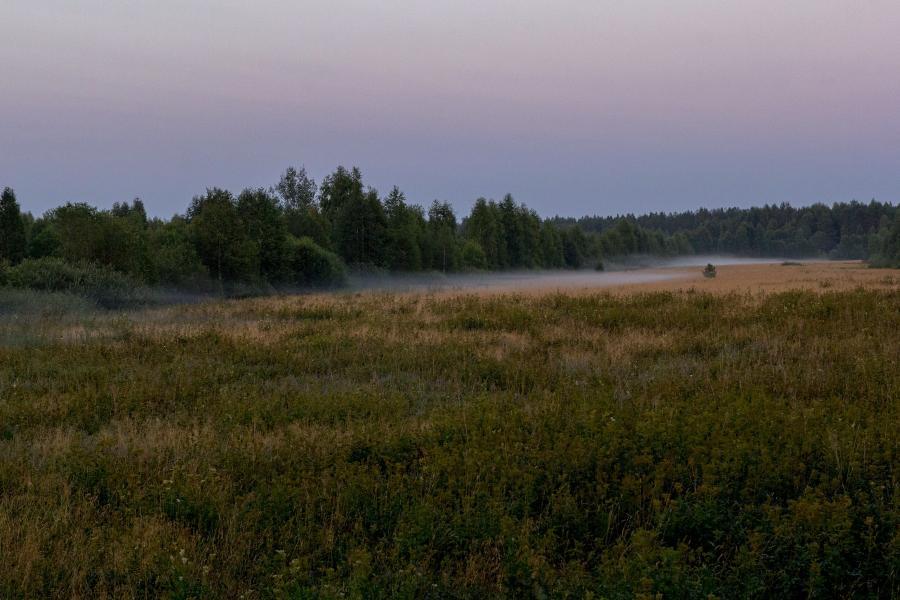 Поздний вечер, закат, туман опускается на болота в верховьях Вятки недалеко от Кирса