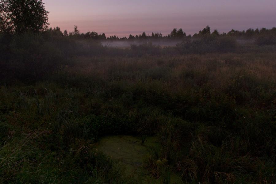 Поздний вечер, закат, туман опускается на болото в верховьях Вятки недалеко от Кирса