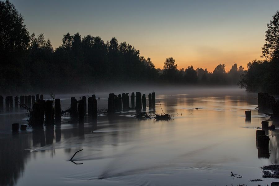 Ночной туман над рекой Вяткой и брёвна опор старого деревянного моста