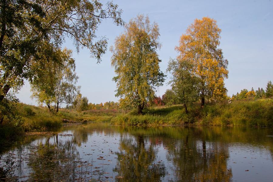 Золотая осень в заповеднике Нургуш: жёлтые берёзки на берегу озерца