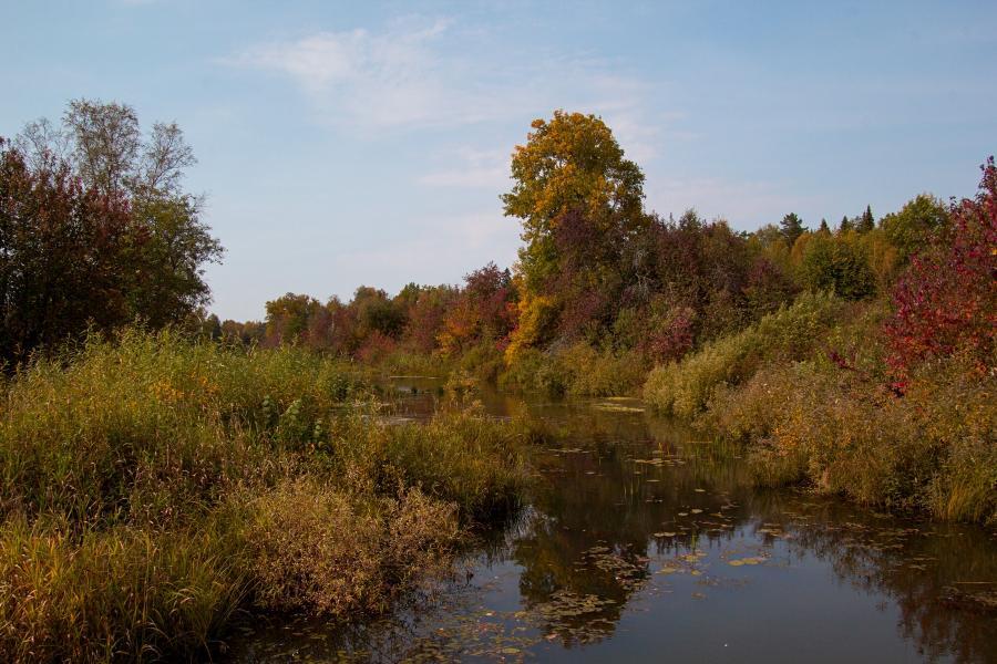 Золотая осень в заповеднике Нургуш: старичное озеро и покрытые жёлтой и багряной листвой деревья