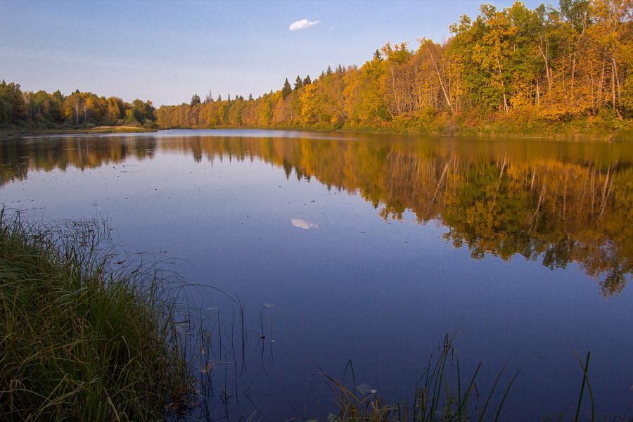 Золотая осень в заповеднике Нургуш: зеркальная гладь озера и жёлтая осенняя листва деревьев
