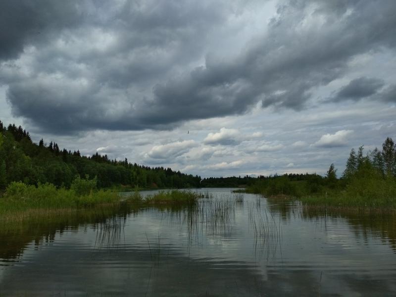Чаки над прудом имени Башлачева - поход выходного дня в Первомайский, Слободской район
