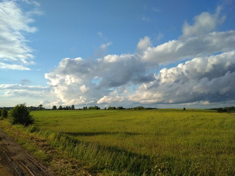 Кучевые облака над зелёными полями у деревни Соковни - поход выходного дня в Первомайский, Слободской район