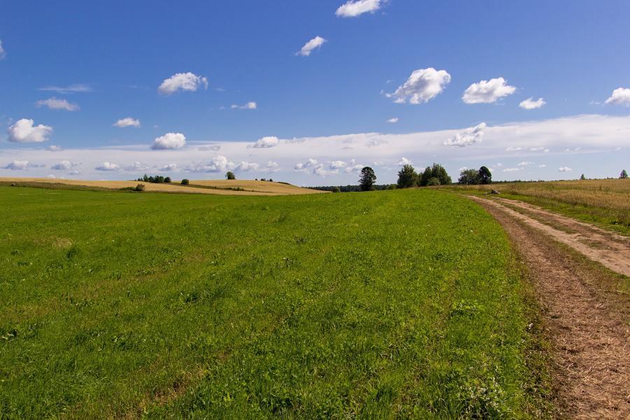 Холмы, поля, луга, облака, небо и полевая дорога недалеко от Адышево