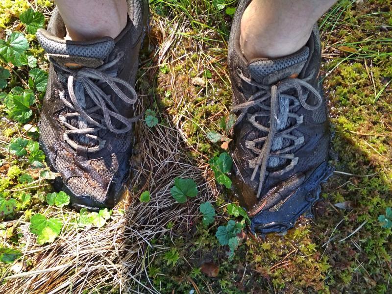 Кроссовки тонут в сфагновом мхе заболоченных берегов озера Орловское