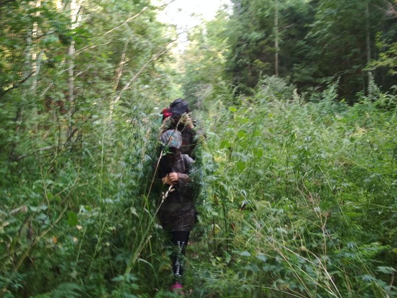 Антон и Дина пробираются через заросли травы на заросшей дороге