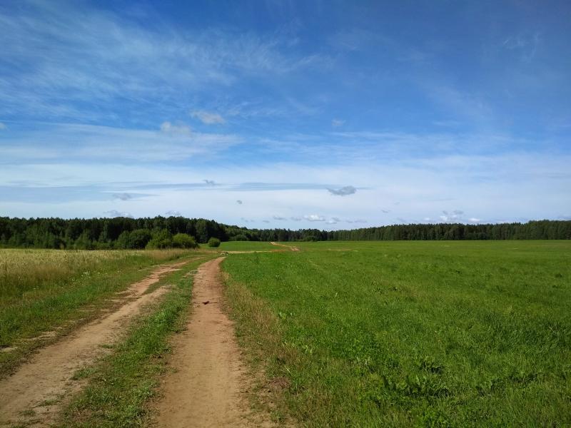 Полевая дорога недалеко от Адышево