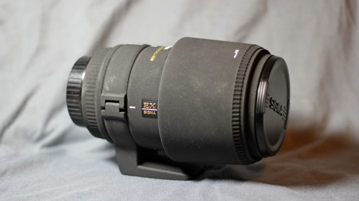 У меня новый объектив Sigma. На этот раз 150 мм макро.