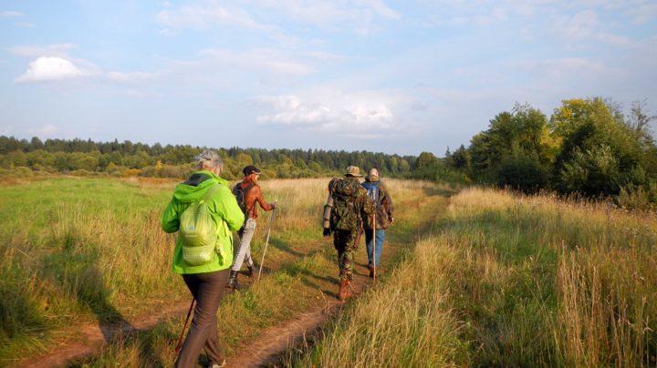 Субботиха - Сидоровка: лесистые гривы, грибовница и ужик