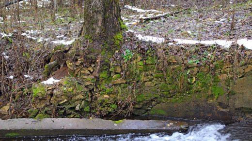 По речкам, каналам и прудам Коминтерна