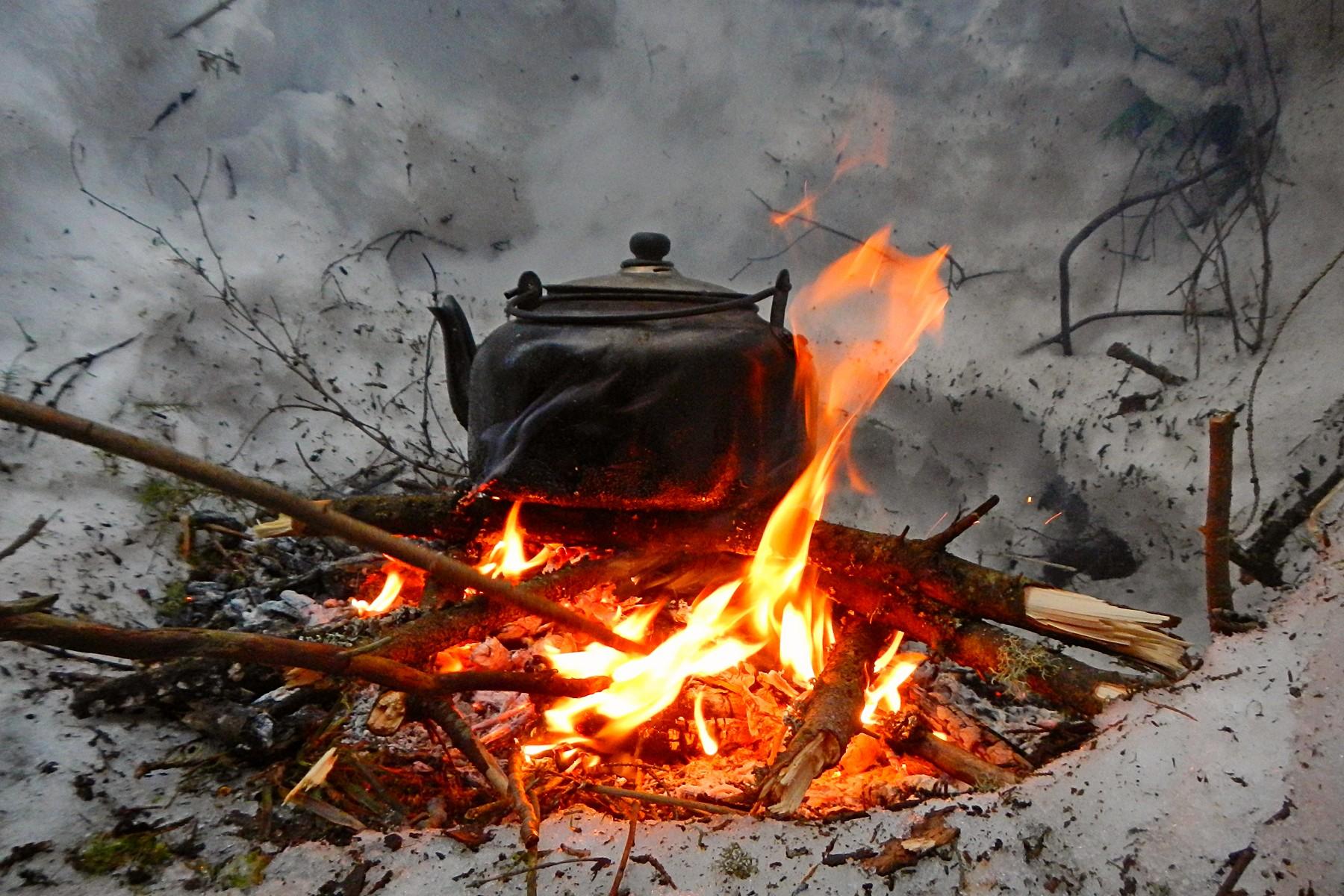 Пикник на заячьей поляне под Волково