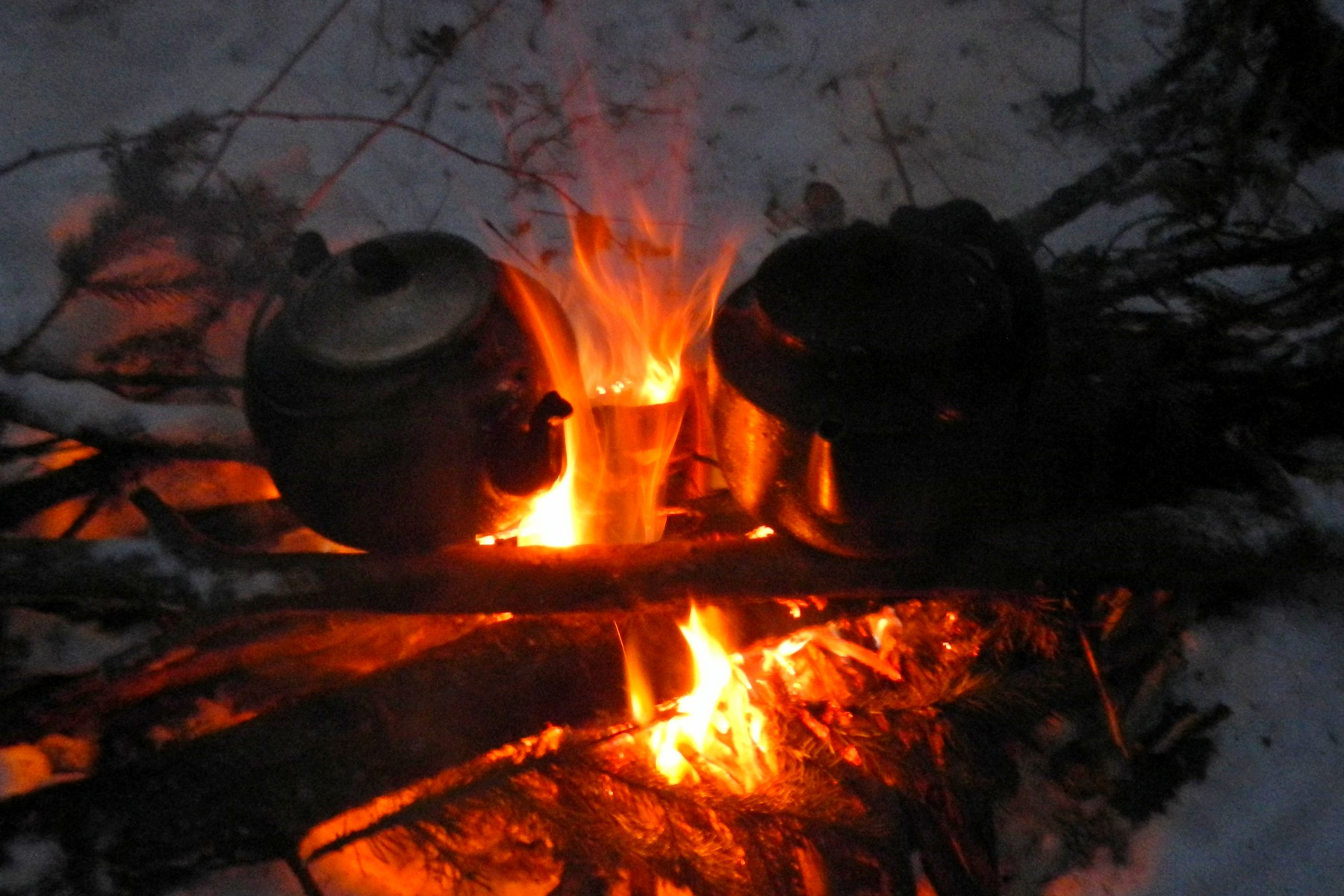 Зимняя прогулка в лес: ночной костёр и постройка берлоги