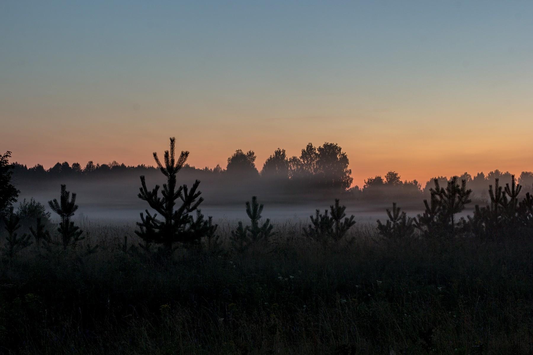Туманный вечер в верховьях Вятки