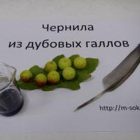 Чернила из дубовых галлов (чернильных орешков)