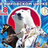 Шоу белых медведей в Кировском цирке