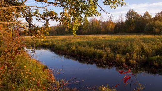 Золотая осень в заповеднике Нургуш