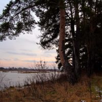 Между осенью и зимой: прогулка по лесам и озёрам